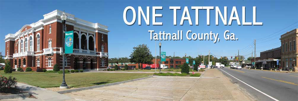 One Tattnall Community Website